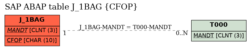 E-R Diagram for table J_1BAG (CFOP)