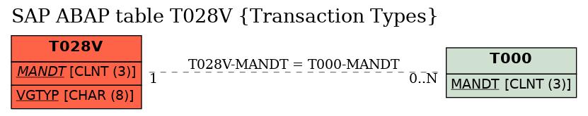 E-R Diagram for table T028V (Transaction Types)