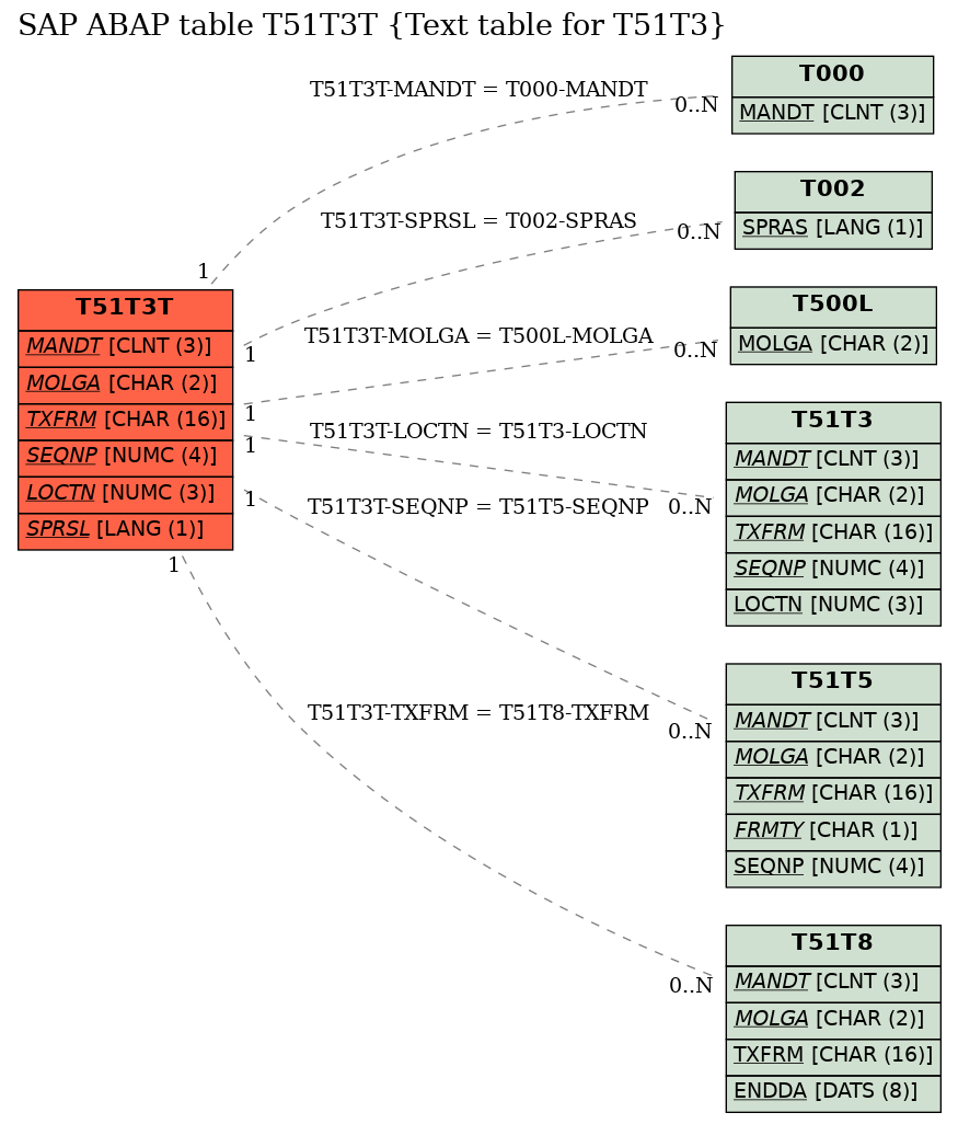 E-R Diagram for table T51T3T (Text table for T51T3)