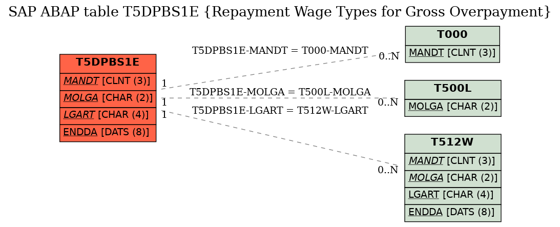 E-R Diagram for table T5DPBS1E (Repayment Wage Types for Gross Overpayment)
